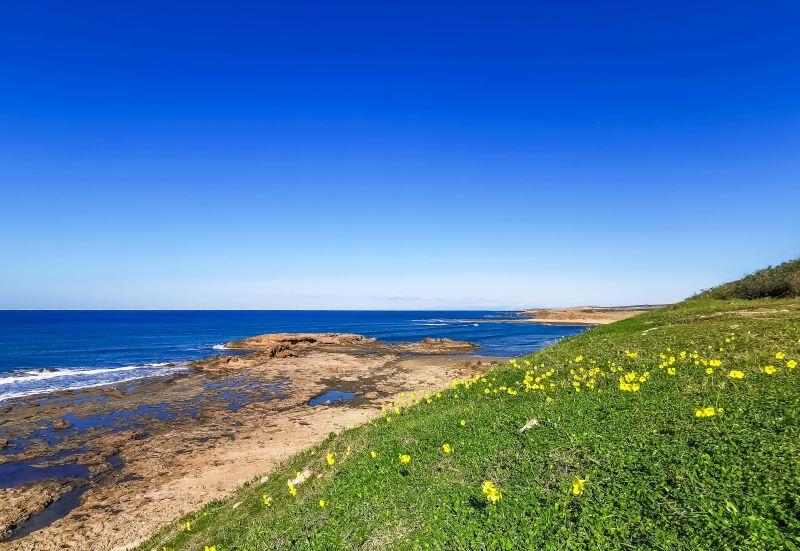 Mavinin ve yeşilin buluştuğu Akdeniz köyü sahili