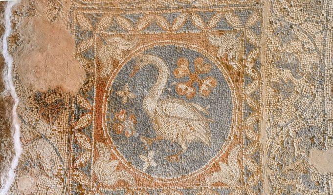 Soli Bazilikası kuğu mozaği