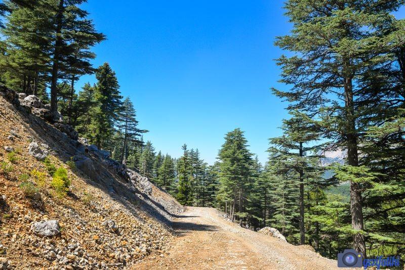 Kızıldağ yayla gezisi Toros Dağlarının üzerindeki yollar gayet iyi durumda